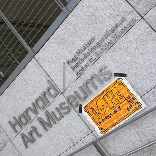 TheONE @Harvard Museums