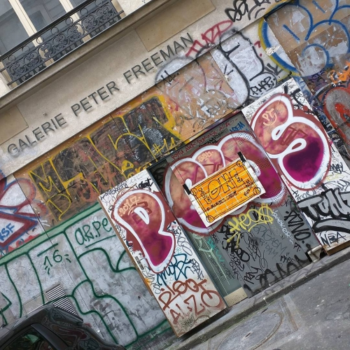 TheONE @Galerie Peter Freeman, Paris